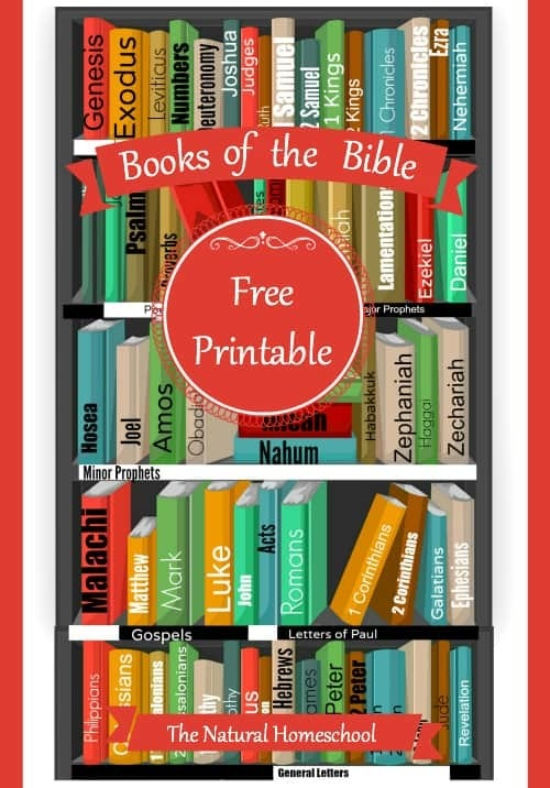 Books Of The Bible Free Printable Worksheets And More