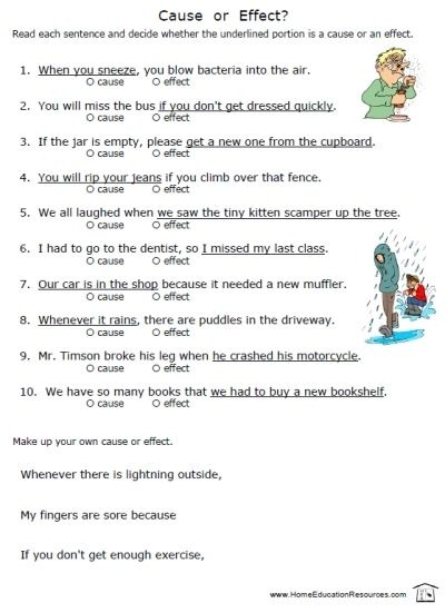 Cause   Effect Worksheets