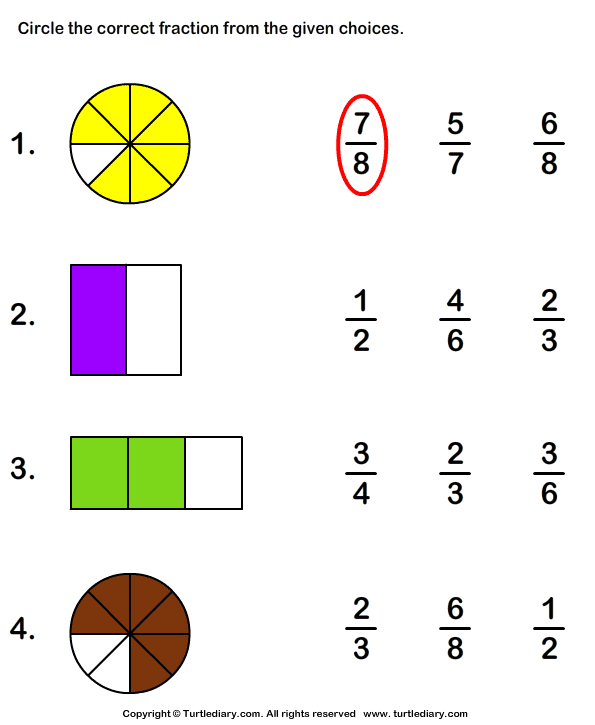 Download And Print Turtle Diarys Shaded Part As Fraction