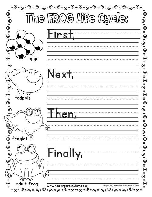 Frog Life Cycle Printables