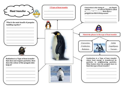 Penguin Heat Transfer Worksheet