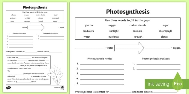 Photosynthesis Worksheet Pdf Twinkl Teacher Made Science