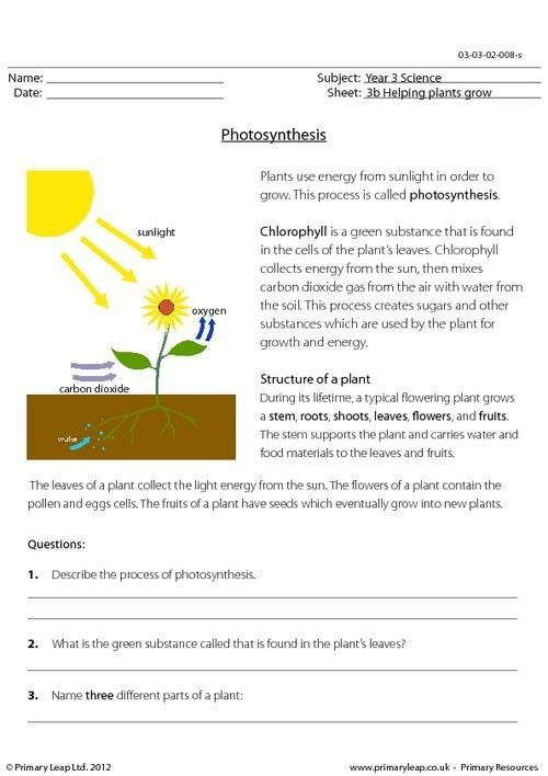 Primaryleap Photosynthesis Worksheet Science Worksheets Lessons