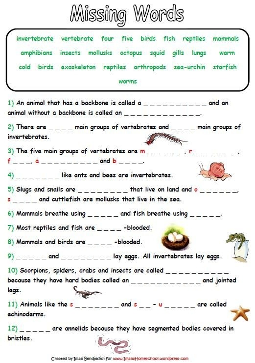 Animal Classification Activity Worksheets Life Science Easy Middle