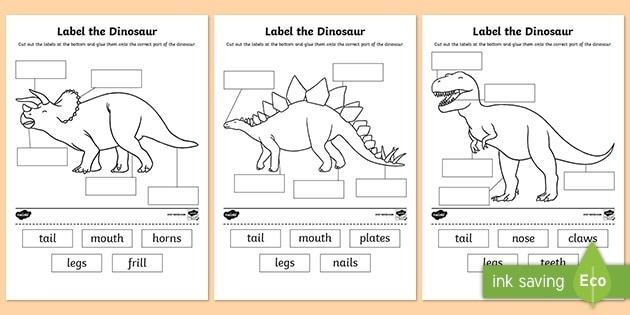 Label The Dinosaur Worksheet Primary Resources Bones Math