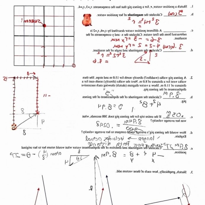 Physics Vector Addition Worksheets Answers Createmepink With