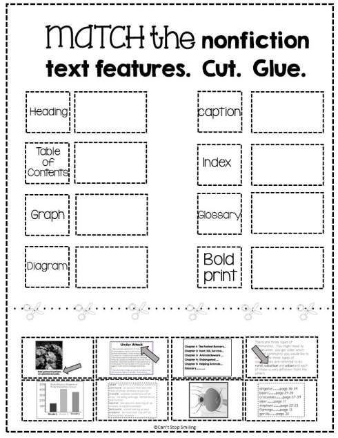 Text Features Worksheet For St Grade In