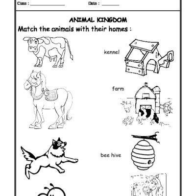 Worksheet Of Worksheet