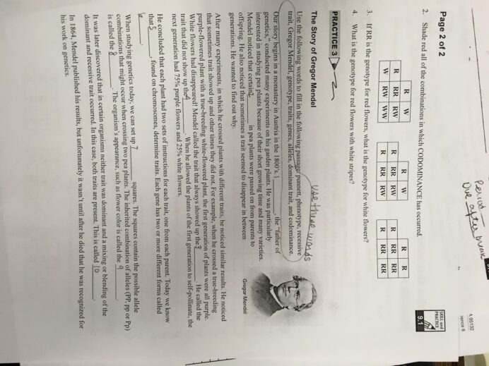 Cpo Science Skill And Practice Worksheets Worksheets Math