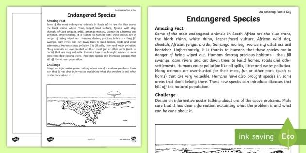 Endangered Animals Worksheet Teacher Made Animal Math Worksheets