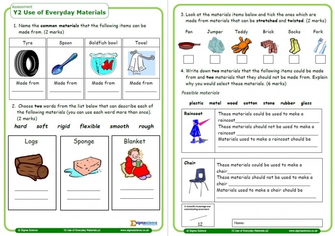 Year Science Assessment Worksheet With Answers Everyday Worksheets