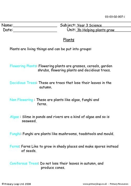 Year Science Printable Resources Free Worksheets For Kids Stage
