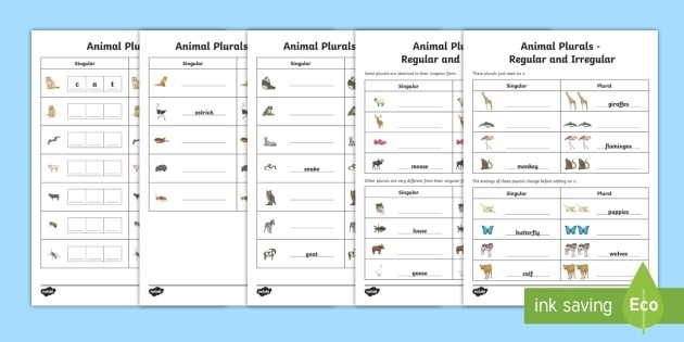 Animal Plurals Differentiated Activity Sheets Teacher Made