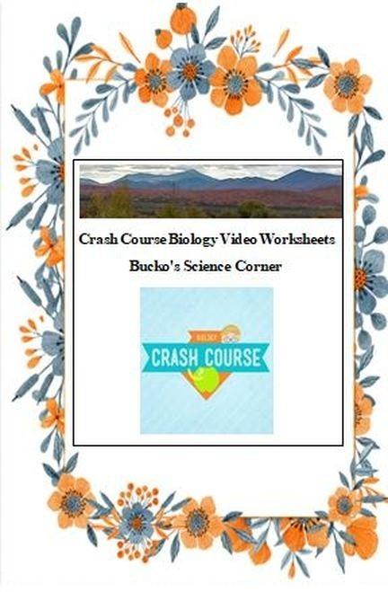 Coloring  Sponges A Coloring Worksheet Inspirational Crash Course
