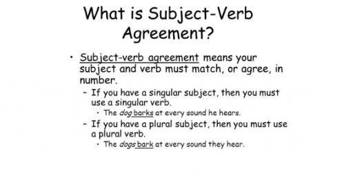 Subject Verb Agreement Test Quiz