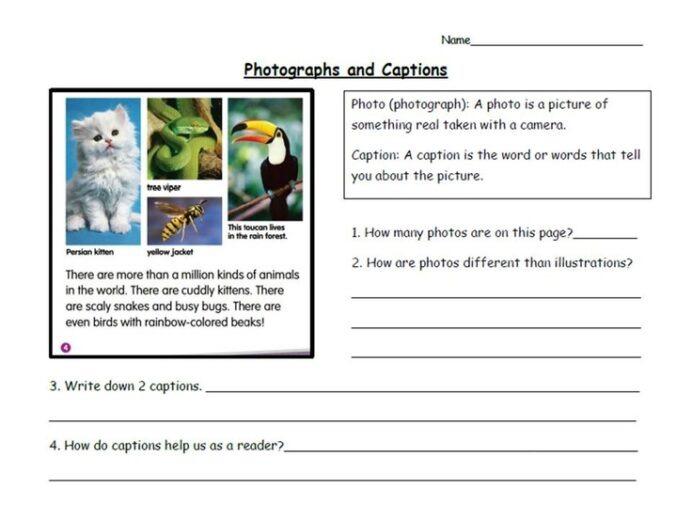 Best Photos Of Nonfiction Text Features First Grade Caption