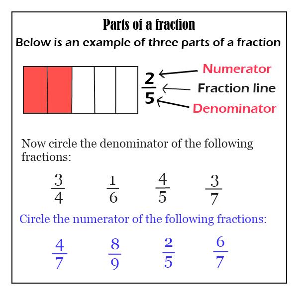 Fraction Review Folder