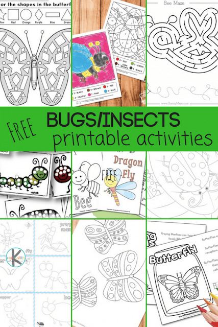 Free Printable Insect Worksheets