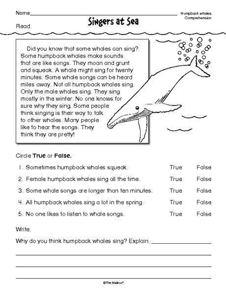 Grade Reading Comprehension Worksheets  All In Wallpaper