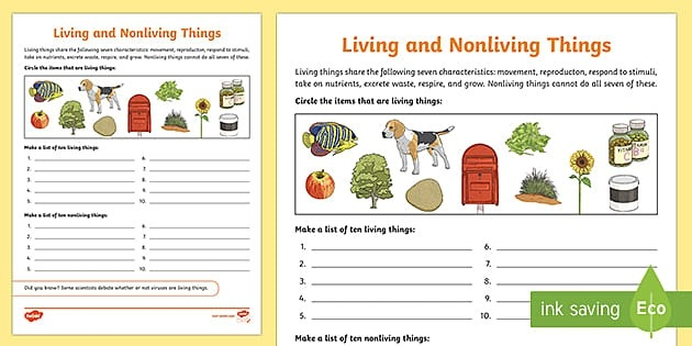 Living And Nonliving Things Activity Teacher Made