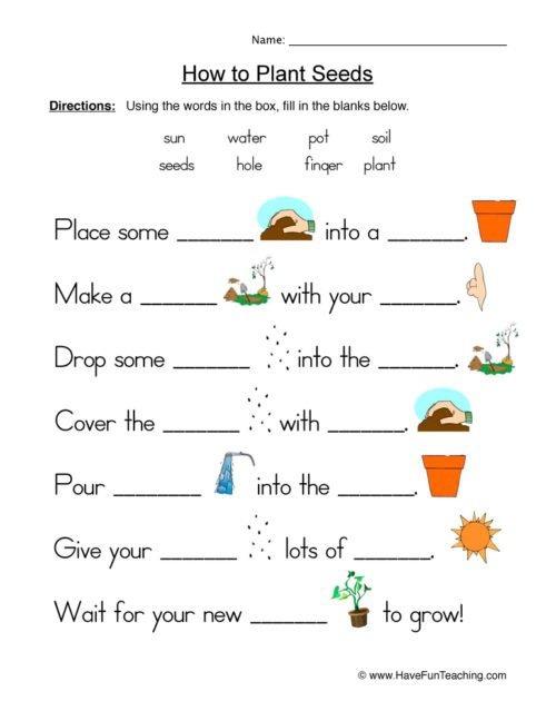 Rd Grade Science Plants Worksheets Seeds Worksheet  Have