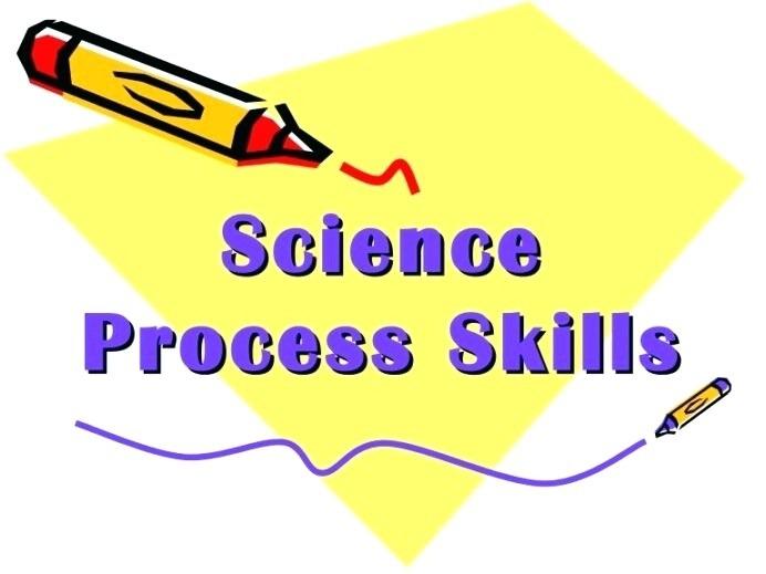 Science Process Skills Interactive Notebook Satsumas Bees