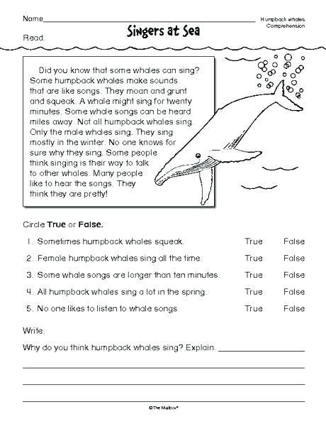 Th Grade Reading Worksheets