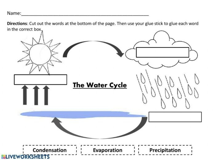 Water Cycle Elementary Worksheets Tremendous Photo Ideas Th Grade